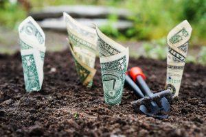viljakusravi raha