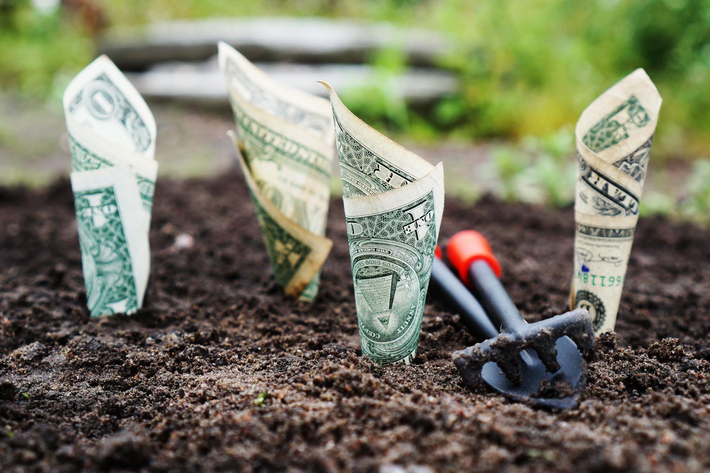 IVF-i hind ehk kuidas leida raha kehaväliseks viljastamiseks